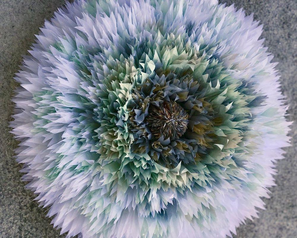 Потрясающие бумажные цветы датской художницы arianne riksen-cott ansen, фото № 37