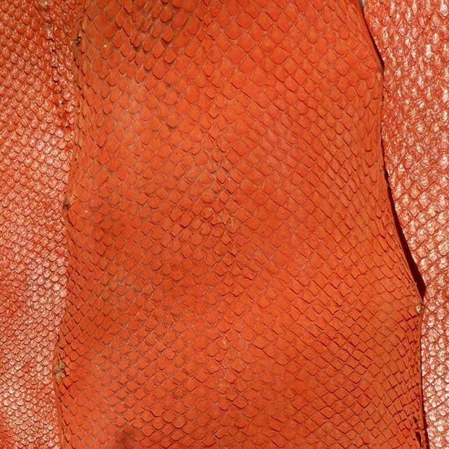 Как ухаживать за рыбьей кожей – Ярмарка Мастеров<br />