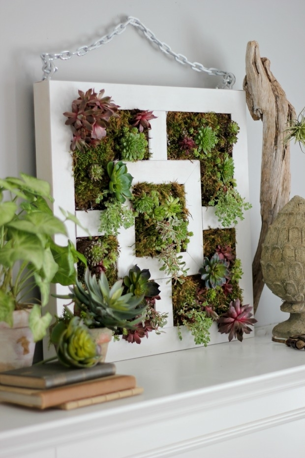 Beauty and Simplicity: 36 Interior Ideas with Succulents, фото № 33