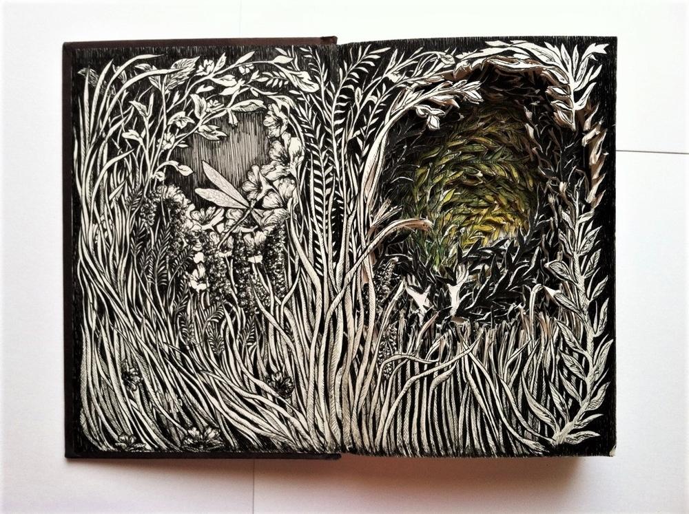 Isobelle Ouzman создаёт удивительные многослойные композиции, вырезанные из старых книг, фото № 13