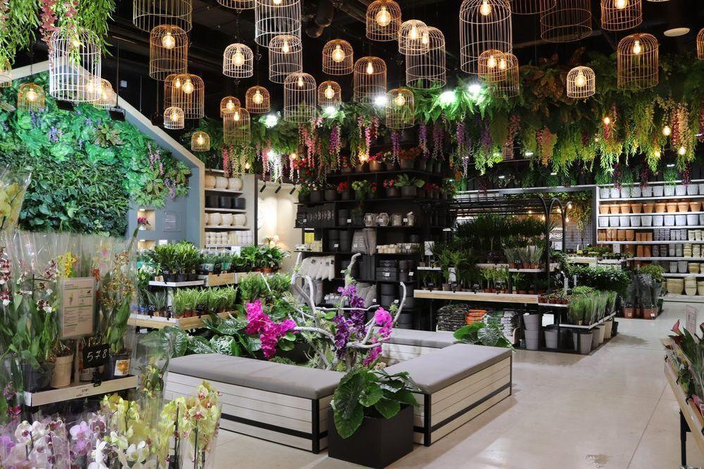 Новый «Леруа Мерлен ЗИЛ» не просто строительный магазин. Там есть мастерская, свежесрезанные цветы и даже роботизированная нога!, фото № 14