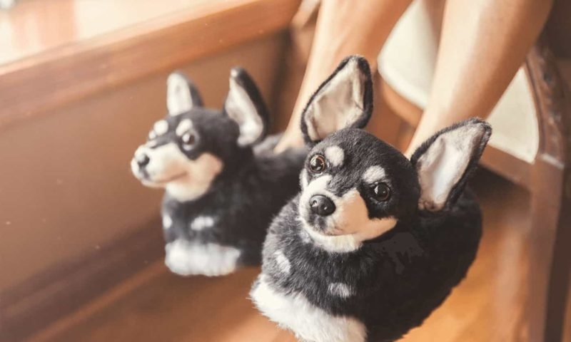 Cuddle Clones Launched Sales Hit: Home Slippers Which Are Copies Of Pets, фото № 25