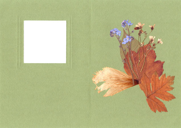 Creating Card in ''Pressed Floristry'' Technique, фото № 3