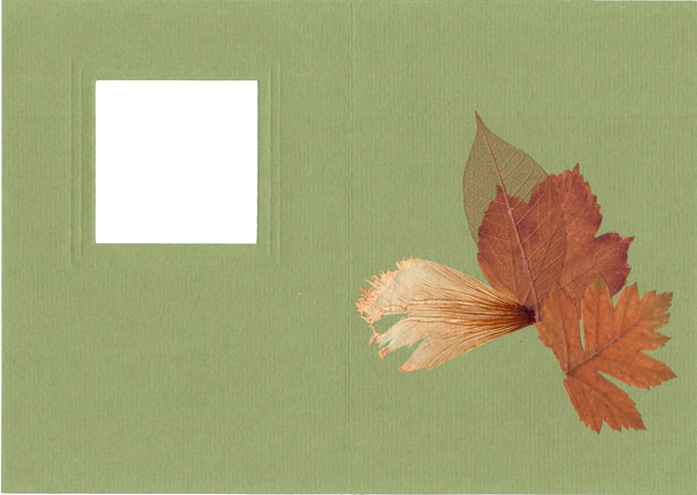 Creating Card in ''Pressed Floristry'' Technique, фото № 2