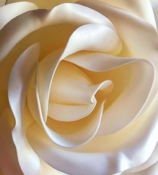 Создаем гигантскую розу из изолона, фото № 2