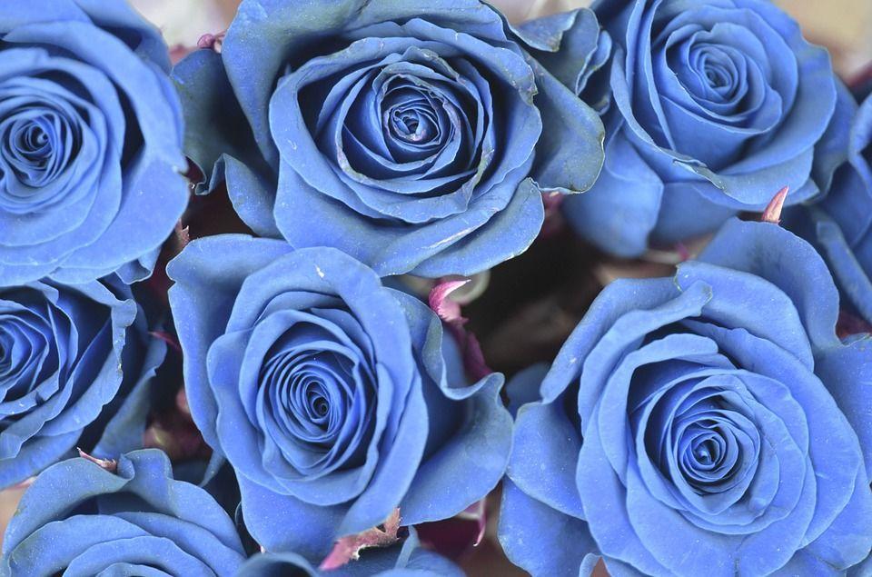Как стать самым романтичным человеком в мире даже при скромном бюджете: 20 сюрпризов для любимых и друзей – Ярмарка Мастеров<br />