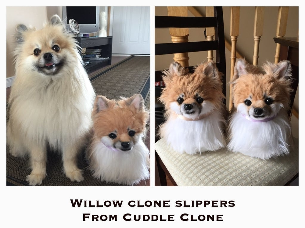 Cuddle Clones Launched Sales Hit: Home Slippers Which Are Copies Of Pets, фото № 37