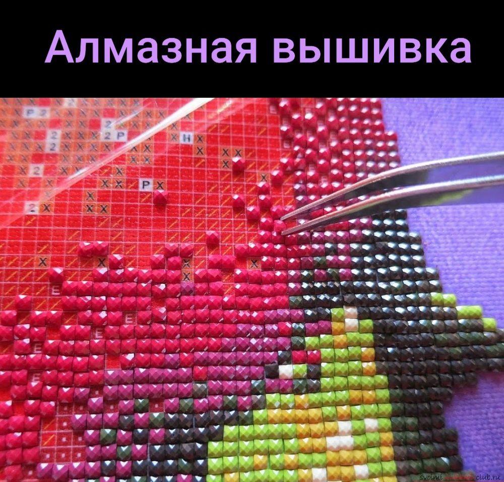 20 редких и необычных видов рукоделия, фото № 21