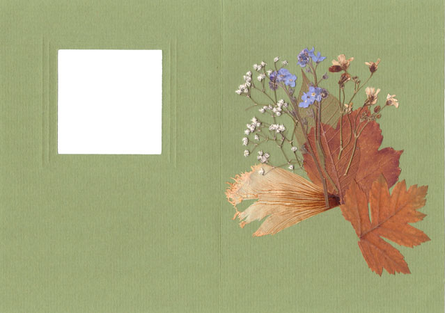 Creating Card in ''Pressed Floristry'' Technique, фото № 4