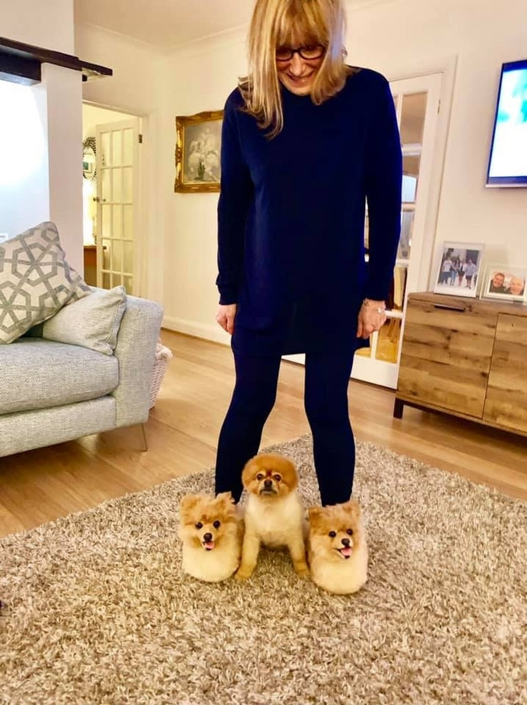 Cuddle Clones Launched Sales Hit: Home Slippers Which Are Copies Of Pets, фото № 15