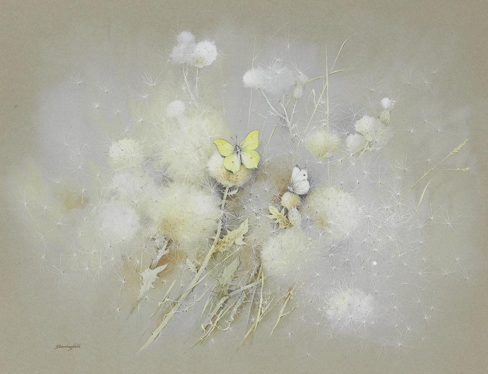 Мир Бабочек Бенингфилда, фото № 11