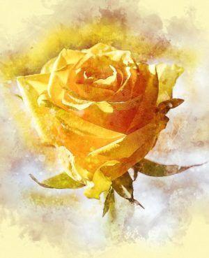 14 советов начинающим художникам по рисованию масляными красками, фото № 8