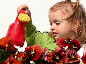 Уход за цветами из полимерной глины. Ярмарка Мастеров - ручная работа, handmade.