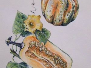 Рисуем тыквы акварелью: видеоурок. Ярмарка Мастеров - ручная работа, handmade.