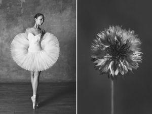 Фотопроект  «Балерина и цветы». Ярмарка Мастеров - ручная работа, handmade.