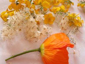 Сухоцветы в ювелирной эпоксидной смоле: убираем с пути несколько увесистых граблей. Ярмарка Мастеров - ручная работа, handmade.