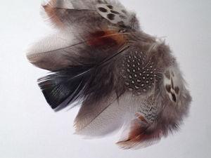 Акция Дня! Супер-бонус к заказу перьев (от 500 р.). Ярмарка Мастеров - ручная работа, handmade.