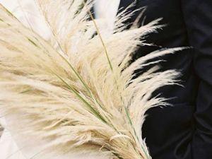 Пампасная трава — открытие декораторов. Ярмарка Мастеров - ручная работа, handmade.