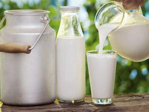 Козье молоко: полезно не только внутри, но и снаружи. Ярмарка Мастеров - ручная работа, handmade.