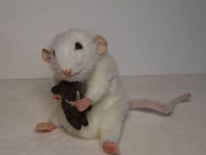 Курс реалистичная крыса. Ярмарка Мастеров - ручная работа, handmade.