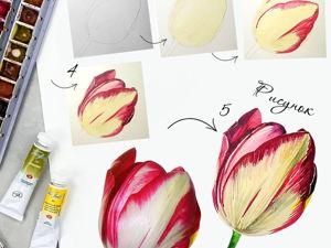 Как нарисовать бутон тюльпана?. Ярмарка Мастеров - ручная работа, handmade.