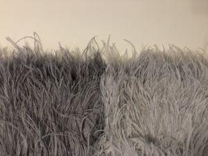 Закупка страусиных перьев на тесьме 10-15 см стоп 15.03.2019. Ярмарка Мастеров - ручная работа, handmade.