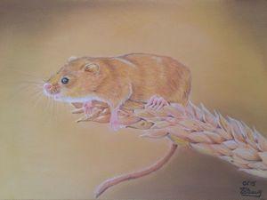 Рисуем пастелью мышку-малютку на колоске. Ярмарка Мастеров - ручная работа, handmade.