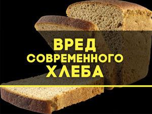 Кандидат медицинских наук о хлебе. Ярмарка Мастеров - ручная работа, handmade.