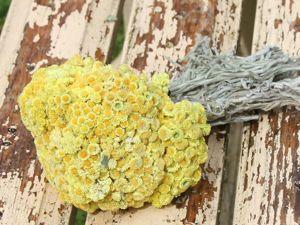 Новые травы вениками. Ярмарка Мастеров - ручная работа, handmade.