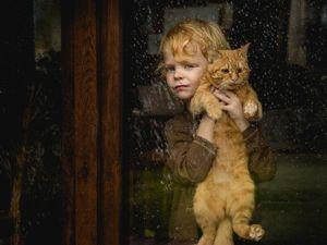 Лучшие фото конкурса  «Дети и животные». Ярмарка Мастеров - ручная работа, handmade.