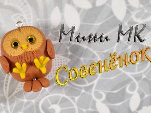 Видео мастер-класс для начинающих Совёнок. Ярмарка Мастеров - ручная работа, handmade.