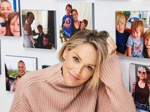 Sharon Stone: Her House as Her Fortress. Livemaster - handmade