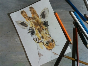 Рисуем жирафа цветными карандашами. Ярмарка Мастеров - ручная работа, handmade.