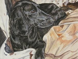 Рисуем черную собаку акварелью. Ярмарка Мастеров - ручная работа, handmade.