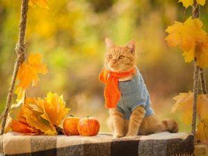 Приглашаю на аукцион  «Теплая Осень» , сумочки + украшения. Ярмарка Мастеров - ручная работа, handmade.