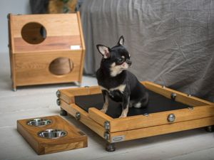 Лежанка или домик- это мебель для кошек и собак?. Ярмарка Мастеров - ручная работа, handmade.