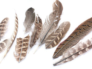 Распродажа, разные перья. Ярмарка Мастеров - ручная работа, handmade.