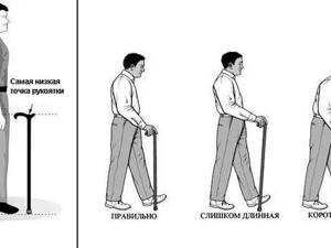 Как правильно подобрать трость для ходьбы по росту. Ярмарка Мастеров - ручная работа, handmade.