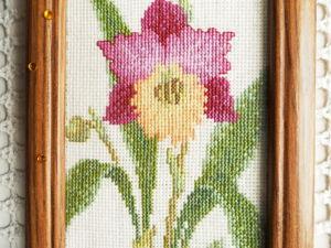 Щедрый аукцион на Орхидеи. Ярмарка Мастеров - ручная работа, handmade.