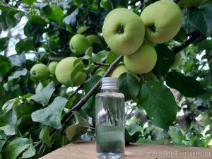 Яблочные дни до конца недели. Ярмарка Мастеров - ручная работа, handmade.