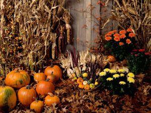 «Хеллоуин стори». Ярмарка Мастеров - ручная работа, handmade.