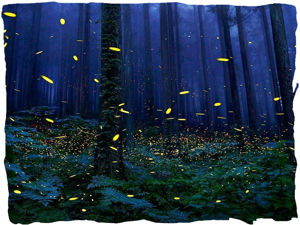 «Ведьмины травы»: парфюмерный оберег!. Ярмарка Мастеров - ручная работа, handmade.