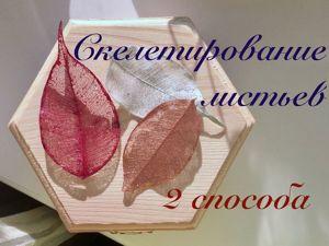 2 способа скелетирования листьев. Как сделать прозрачные листья. Видео мастер-класс. Ярмарка Мастеров - ручная работа, handmade.