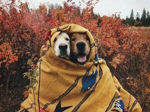 Осенний марафон — акция!. Ярмарка Мастеров - ручная работа, handmade.