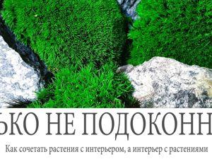 Как сочетать растения и интерьер, ну и наоборот. Ярмарка Мастеров - ручная работа, handmade.
