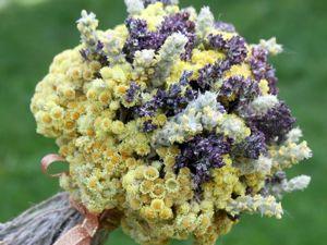 Букеты из сухоцветов — новинки. Ярмарка Мастеров - ручная работа, handmade.