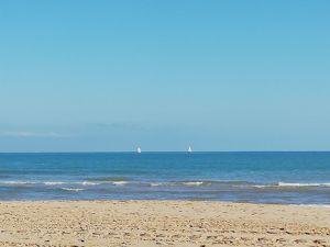 Испания. Олива. Море. Ярмарка Мастеров - ручная работа, handmade.