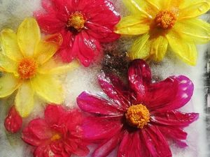 Замороженные цветы. Ярмарка Мастеров - ручная работа, handmade.