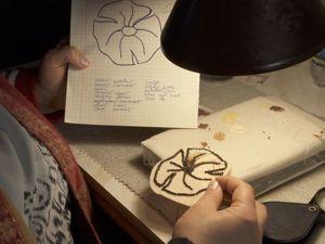 3 месяца проекту  «Женское Дело». Ярмарка Мастеров - ручная работа, handmade.