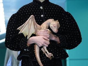 Сумки-головы, драконы, змеи — все это про показ  Gucci 2018. Ярмарка Мастеров - ручная работа, handmade.